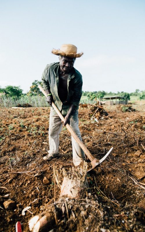 Man holidng a pickaxe - rural government contracts